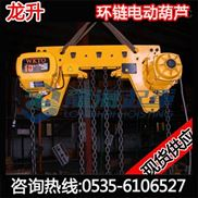 220V单速环链电动葫芦【过载保护装置】固定式电动葫芦