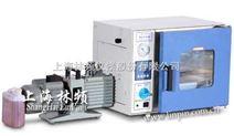 DZF-6020电热真空干燥箱(江苏南京/无锡/盐城)