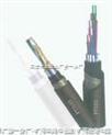 煤矿用阻燃通讯电缆 MHYAV MHYA32 MHYV 矿用阻燃电缆 报价