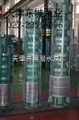 耐磨耐腐蚀潜水泵,耐腐蚀高压潜水泵,天津不锈钢潜水电机,天津潜水电泵,三相潜水电机