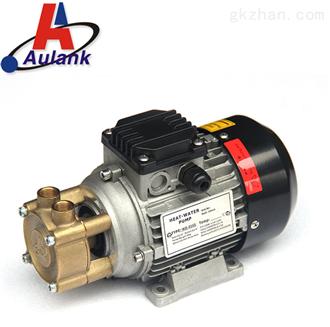 德国款Y-2091高温泵