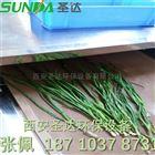 大棚绿色蔬菜脱水烘干机 圣达微波设备