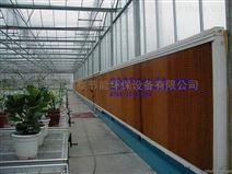 惠州博羅漂染廠水簾風機制造商
