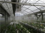 深圳种植大棚加湿设备
