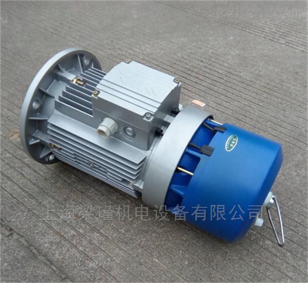 BMA100L-6紫光刹车电机