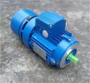BMA7112紫光刹车电机