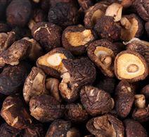 山东地区生产香菇微波干燥杀虫卵设备