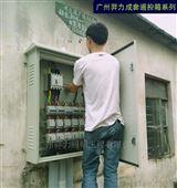 路灯无线遥控配电箱 控制器终端挂墙控制箱