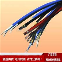 WDZ-DCK-125 750V机车控制电缆