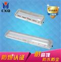 eYD51-40x2防爆防腐荧光灯