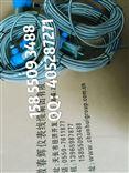 一体化超低频振动位移速度传感器RS9300、MLS/V-9
