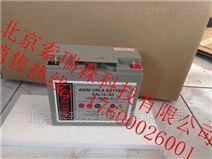 索瑞森免维护铅酸蓄电池SAL12V33AH 价格