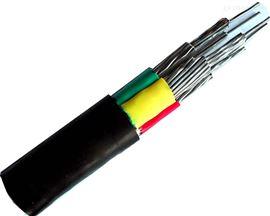 铜芯聚氯乙烯绝缘电力电缆