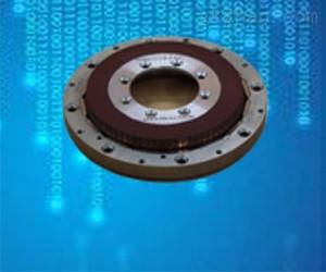 NH85LYX系列直流力矩电机