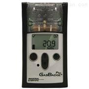 GBPro一氧化碳硫化氢气体探测器