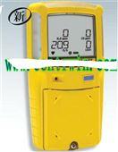 BNX3-X000-1可燃气体检测仪