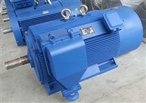 紧凑型高压三相异步电动机