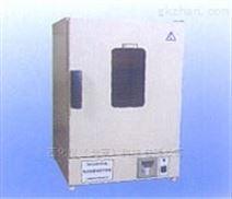 电热恒温鼓风干燥箱 型号:CX94-DHG-9123A
