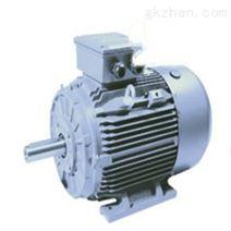 Omec Motors高压电动机