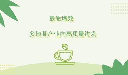 提质增效 多地茶产业向高质量进发
