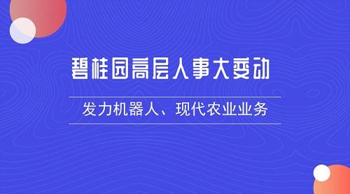 碧桂园高层人事大变动 发力机器人、现代农业业务