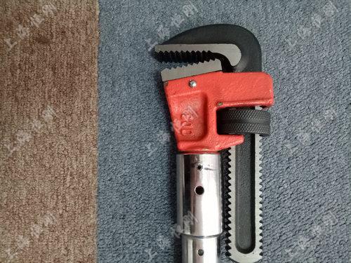 SGSX高精度带角度扭力扳手  可换管钳头