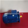 MS8024-0.75KW紫光三相异步电动机