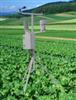 ST-WZQ甘肃固定式无线农业综合气象监测站