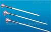 WRR-130天儀牌B型耐高溫防腐鉑銠熱電偶