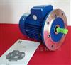 MS5634台州紫光电动机