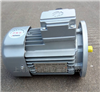 MS7124浙江台州中研紫光三相异步电动机